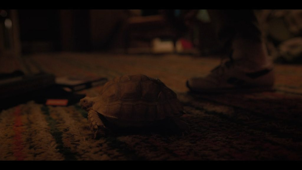 Stranger Things Season 2 - All the Easter Eggs, References, Homages and Callbacks - Episode 3: The Pollywog